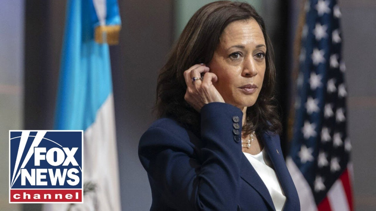 ex-kamala-harris-aide-gives-interesting-excuse-for-immigration-interview